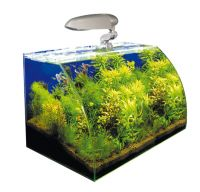 Wave acquario Box Vision 45Cosmos