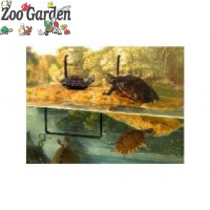 zoo med ventose ricambio turtle dock 4 pz