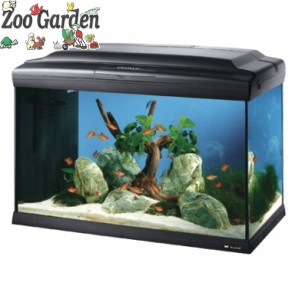 ferplast acquario cayman 60 professional nero