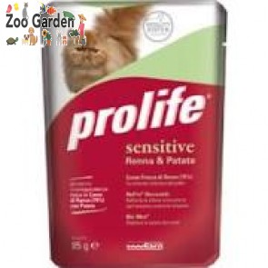 prolife gatto adult
